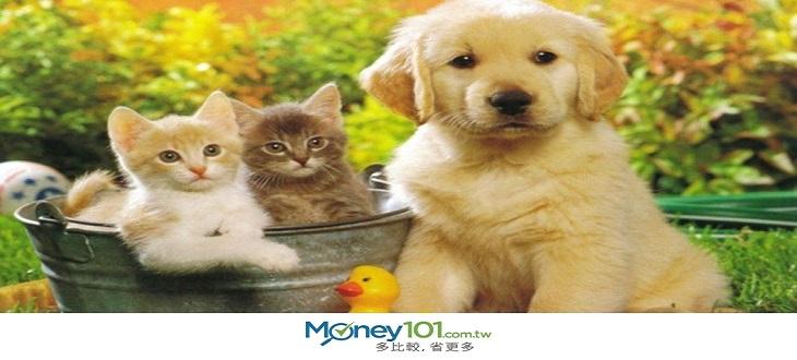 稅不稅,世界各國寵物稅比較